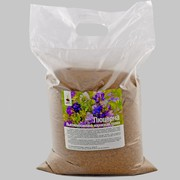 Продам семена Люцерны