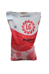 Семена гибрида подсолнечника Мегасан от Лимагрейн (Limagraine)